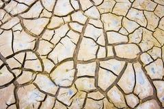 Sprickor i lera Arkivfoton