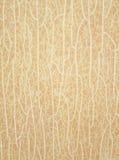 Sprickor på en brun bakgrund Royaltyfria Foton