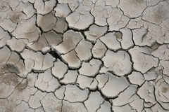 sprickor torkade mud Arkivfoton