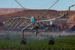 Spridare för sprej för skördbevattningfält som bevattnar systemet royaltyfria foton