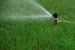 Spridarehuvudet bevattnar gräset Royaltyfri Fotografi