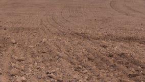 Spridd gödningsmedel för jord och för traktor på fält Plantera suggaskördar stock video