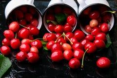 Spridd körsbär från emaljkoppar Körsbär i järnkopp på svart bakgrund Sunt sommarfrukt Körsbär tre close upp arkivfoton