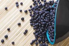 spridda blåbär Arkivbild