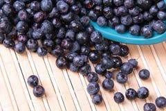 spridda blåbär Royaltyfri Fotografi