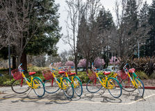 Spridda Google cyklar Arkivfoton