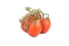 Sprig красных томатов Стоковые Изображения RF