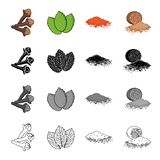 Sprig of allspice, mint grass, spicy paprika, nutmeg. Grass and spice set collection icons in cartoon black monochrome. Outline style vector symbol stock Royalty Free Stock Photos