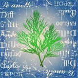Sprig of dill. On a text background Royalty Free Stock Images