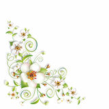 Sprig Flowers Background Corner Stock Photography