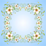 Sprig flowers frame background  Royalty Free Stock Photos