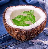 Sprig of fresh garden mint in a coconut shell on Royalty Free Stock Photography
