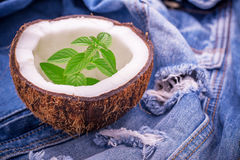 Sprig of fresh garden mint in a coconut shell on Stock Image