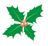 Sprig of holly. Illustration of holly leaf motif with red berries Stock Image
