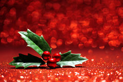 Sprig of holly glitter background Stock Image