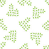 Sprig with leafs seamless pattern. Handmade,vector illustration Stock Image