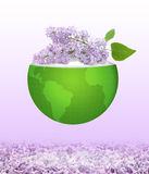 Sprig of lilac Stock Photos
