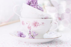 Sprig of lilac in a cup Royalty Free Stock Photos