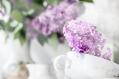 Sprig of lilac in a cup Stock Photo