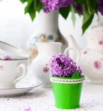 Sprig of lilac in a cup Royalty Free Stock Photography