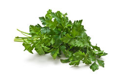 Sprig of parsley Stock Photography