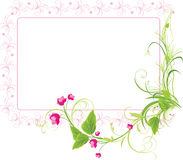 Sprig with pink flowers. Frame Stock Photos
