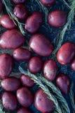 Sprigs картошек и Розмари младенца красные стоковые изображения