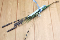 Sprigs des Lavendels blühen gebunden im blauen Tupfenband. Lizenzfreie Stockfotografie