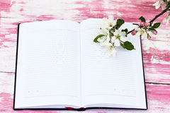 The sprigs of flowering apple-tree. With a notebook Stock Photography