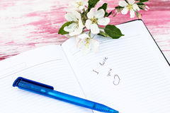 The sprigs of flowering apple-tree. With a notebook and pen Royalty Free Stock Images