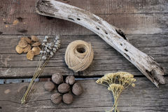 Sprigs of herbs, walnuts, string and wooden branch on wooden background. Vintage style. Royalty Free Stock Photos