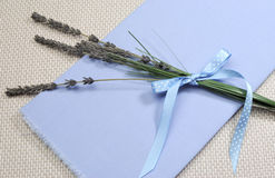 Sprigs of Lavender flower on blue napkin Royalty Free Stock Image