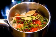 Sprigs oregano w gorącym warzywo pomidory, pieprze, Fotografia Royalty Free
