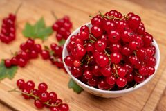 Red currant in a white Cup. Sprigs of red currant in a white Cup on a wooden table royalty free stock images