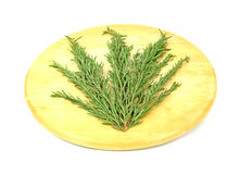 Sprigs Rosemary Arranged Carousel Stock Photos
