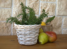 Sprigs of rosemary Royalty Free Stock Image