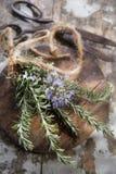 Sprigs of rosemary Stock Photo