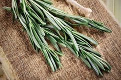 Sprigs of rosemary on a wooden board closeup horizontal low angl Royalty Free Stock Images