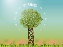 Spriing träd stock illustrationer