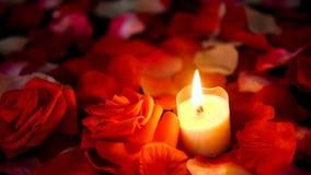Sprikles nam bloemblaadjes, bloem en kaars het branden lengte toe De dag van decoratievalentine stock video