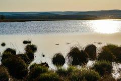 Spring湖在中午 免版税库存照片