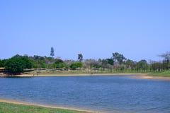Spring湖岸 库存照片