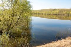 Spring湖 池塘春天 免版税库存照片