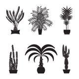 Spring är här igen Illustration av palmträd på vit bakgrund stock illustrationer