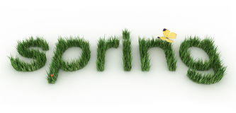 Spring. The word spring made of a green grass Royalty Free Stock Images