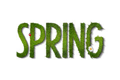 Spring Stock Photos
