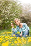 Spring Royalty Free Stock Photography