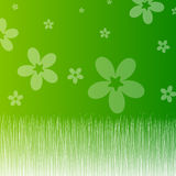 Spring. Illustration of green spring.Spring background Royalty Free Stock Photo