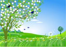 In spring Stock Photos
