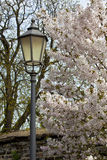 Spring 2012 Stock Photography